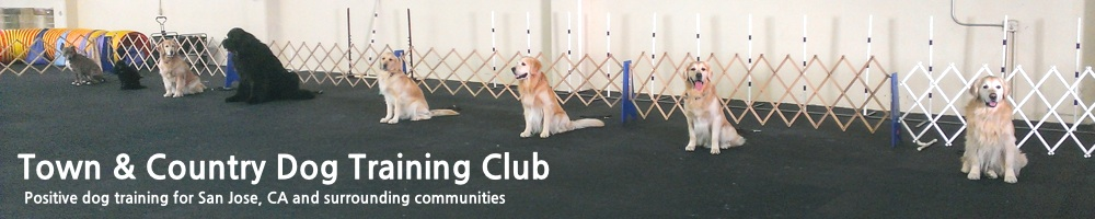 Town & Country Dog Training Club